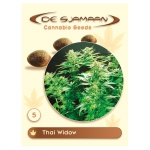 Thai Widow (De Sjamaan Cannabis Seeds)