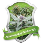 Outdoor Mix Automatic (Royal Queen Seeds)