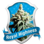 Royal Highness Medical (Royal Queen Seeds)