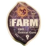 CBD Critical Cure Feminized (Barney's Farm)