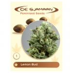 Lemon Bud Feminised (De Sjamaan Cannabis Seeds)	1 seed
